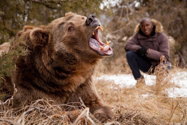 Dokument Velká zvířata: Poslední obři