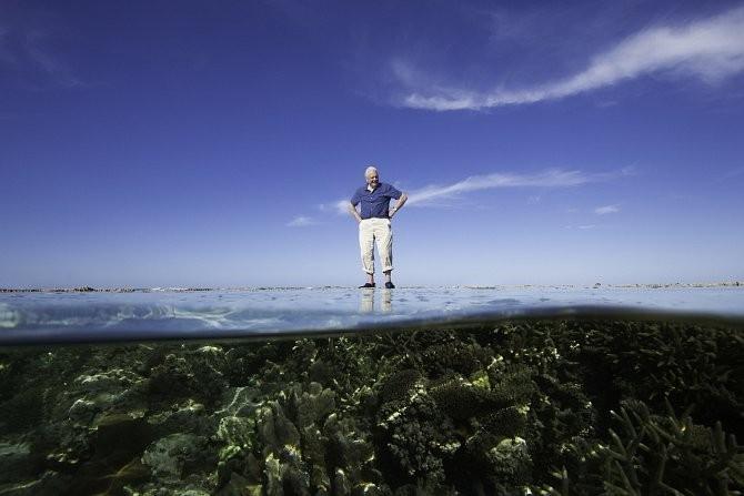 Dokument David Attenborough: Velký bariérový útes