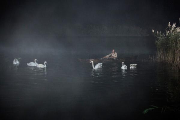 O šesti labutích