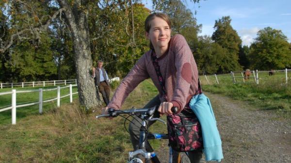Seriál Inga Lindström: Divocí koně