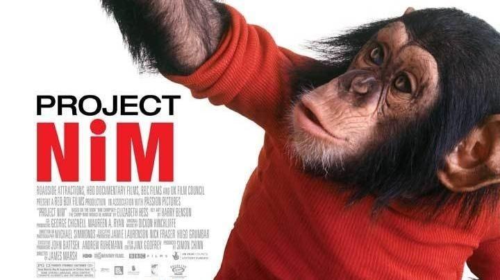 Dokument Project Nim
