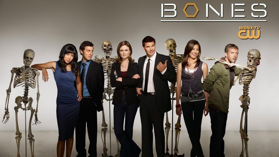 Seriál Sběratelé kostí