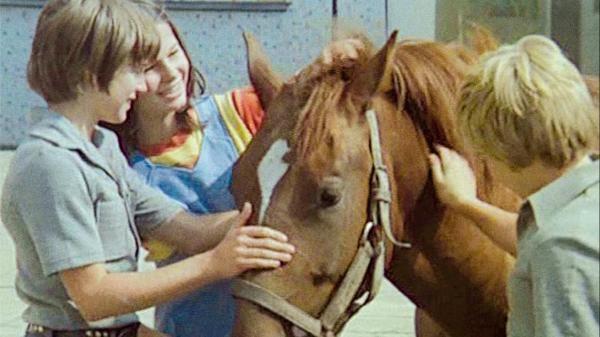 Neohlížej se, jde za námi kůň