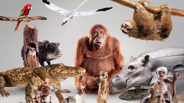 Szpiedzy wśród zwierząt