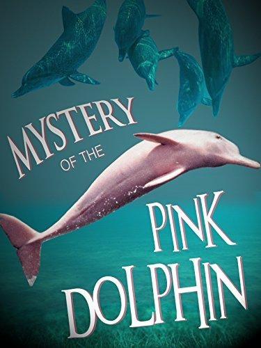 Tajemství růžového delfína