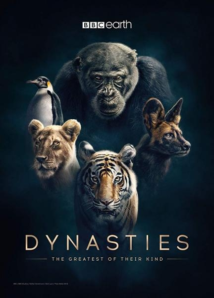 David Attenborough: Zvířecí dynastie