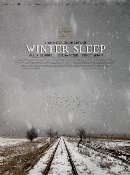 Zimní spánek