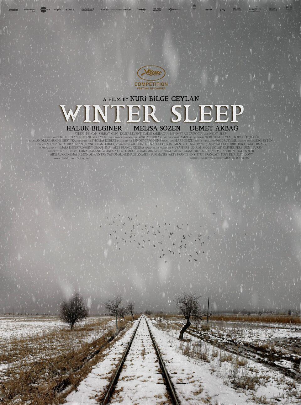 Film Zimní spánek