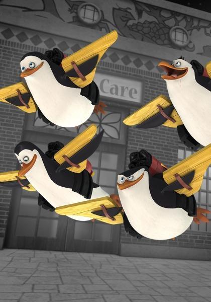 Tučniaky z Madagaskaru