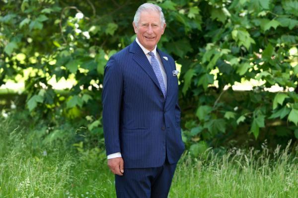 Charles, následník trůnu