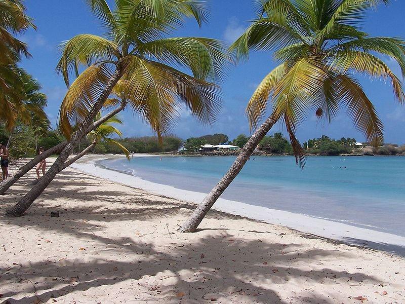 Dokument Kurs Karibské ostrovy
