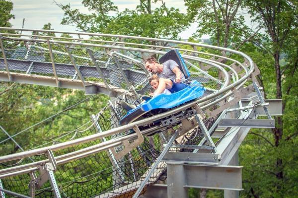 Alpine Rollercoaster