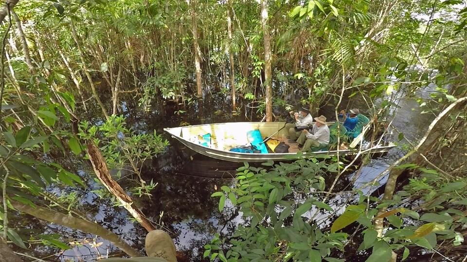 Dokument Uakari, Humboldtova ztracená opice