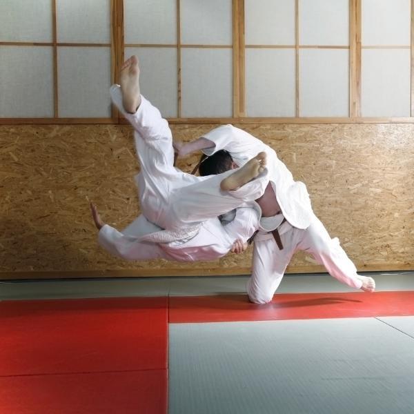 Judo világbajnokság