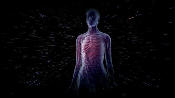 Tajemství lidského těla