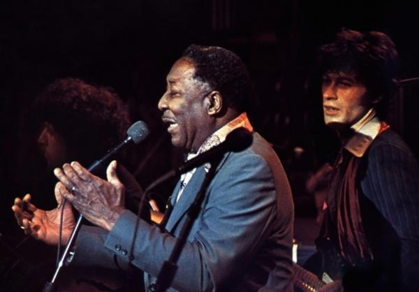 Dokument Muddy Waters: Live in Chicago