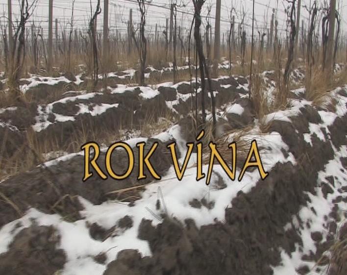 Dokument Rok vína