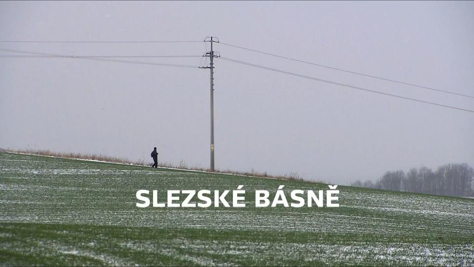 Dokument Slezské básně
