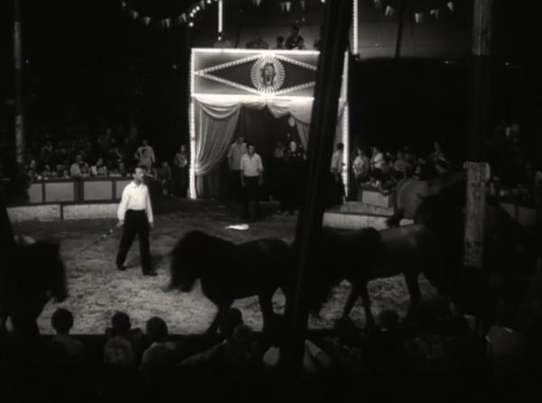 Cirkus Kludský