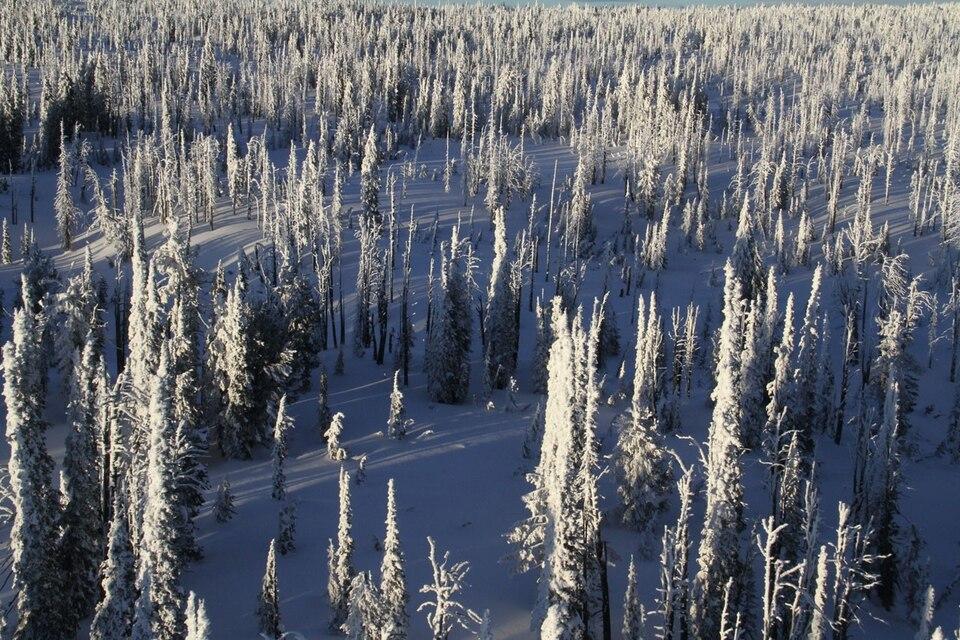Documentary Všechny krásy Yellowstonu