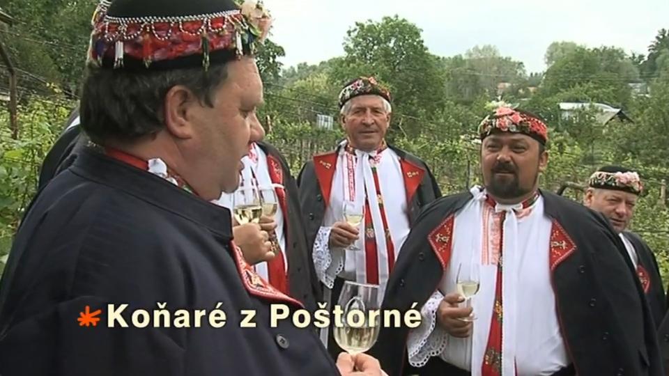 Dokument Koňaré z Poštorné