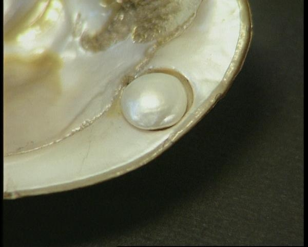 Příběh perlového ornátu