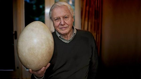 Dokument David Attenborough a obří vejce