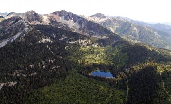 Darkwoods: Perla Britské Kolumbie