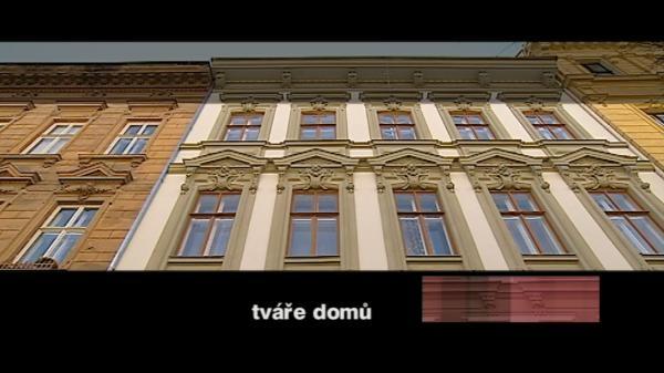 Tváře domů