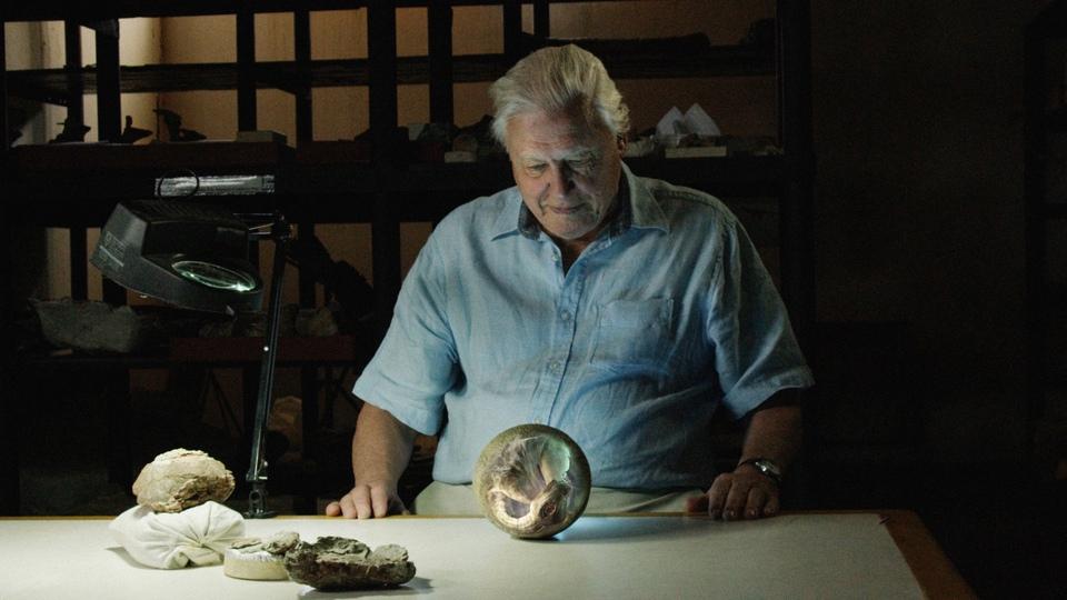 Dokument David Attenborough a obří dinosaurus