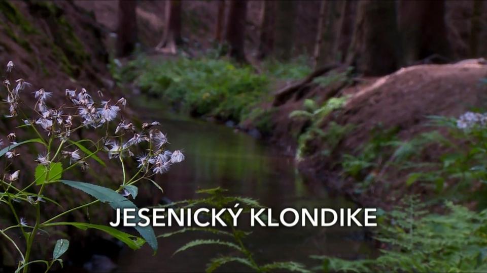 Dokument Jesenický Klondike
