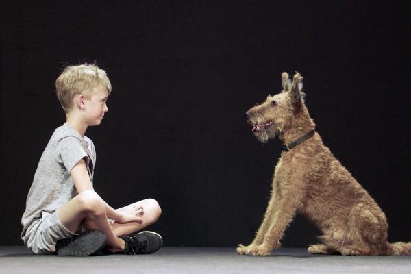 Psi a my: Tajemství jednoho přátelství