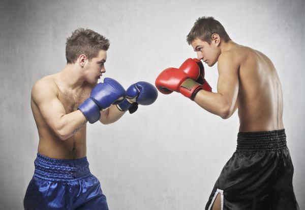 Box: Save Boxing Ústí nad Labem