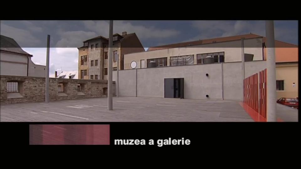 Dokument Muzea a galerie